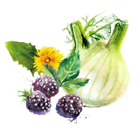 BESTE KUMPELS® Gemüse & Obst Flocken, Frischgemüse